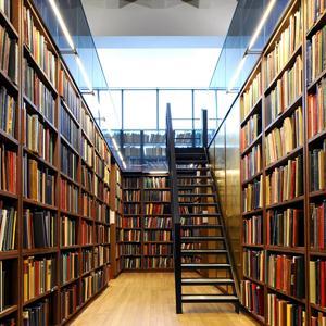 Библиотеки Богатыря